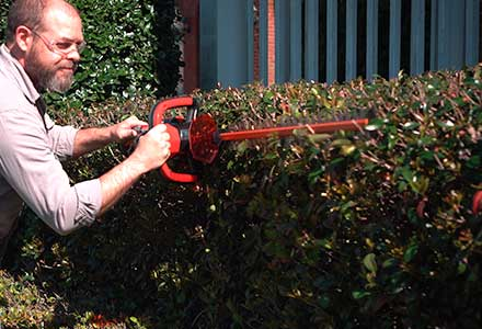 DR Hedge Trimmer