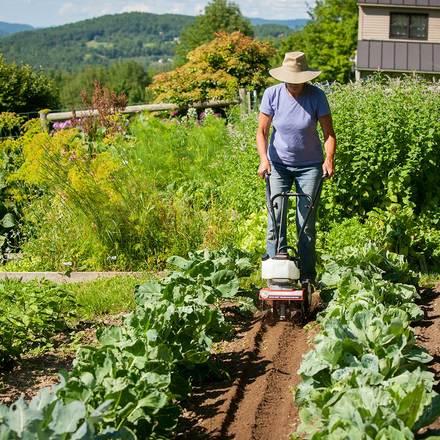 DR Mini Tiller Cultivator